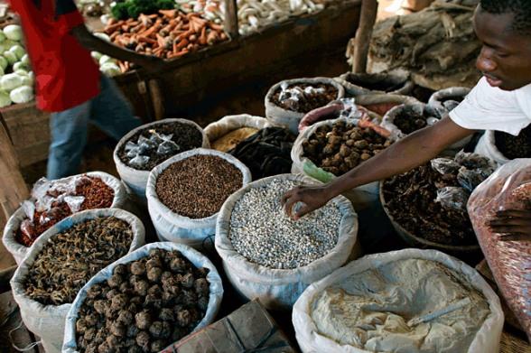 external image food-in-africa.jpg?w=588